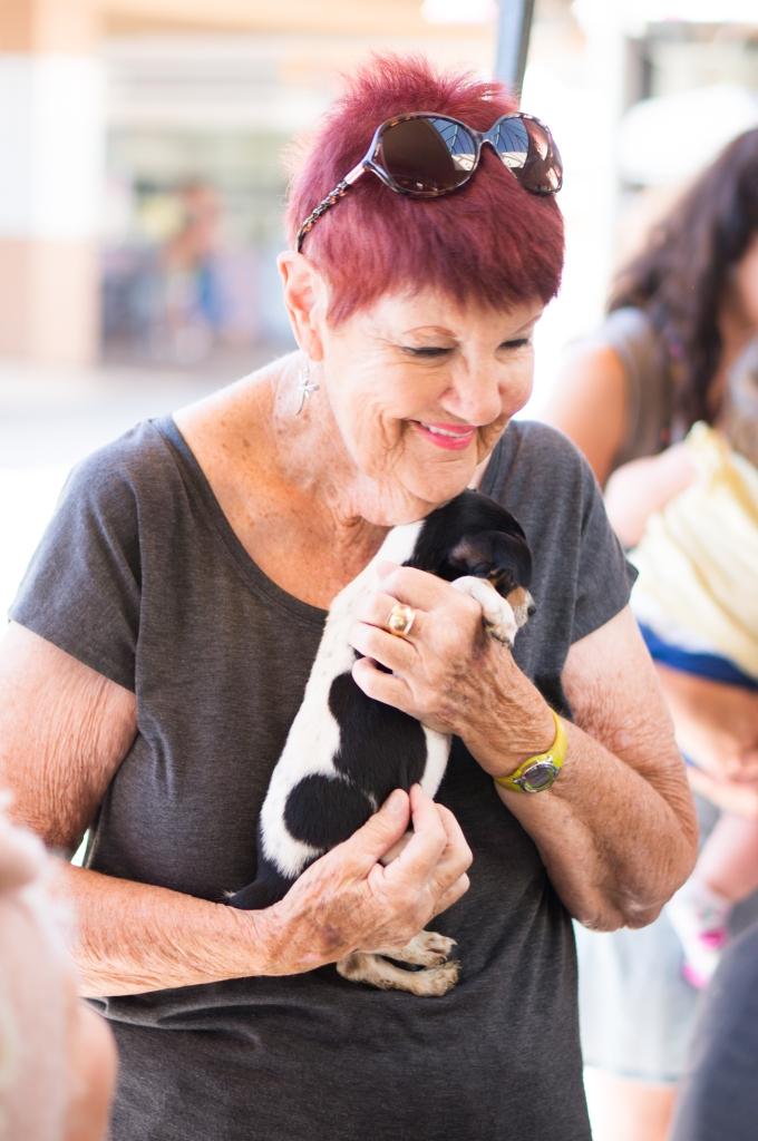 Animal Shelter Volunteering Wen Li Photography